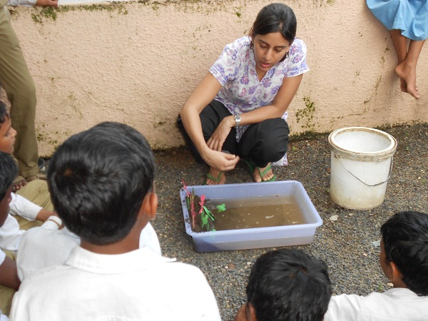A small demonstration of soil erosion