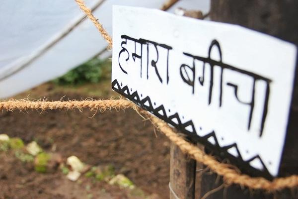 Our organic garden all ready to go! Image: Ankit Pogula